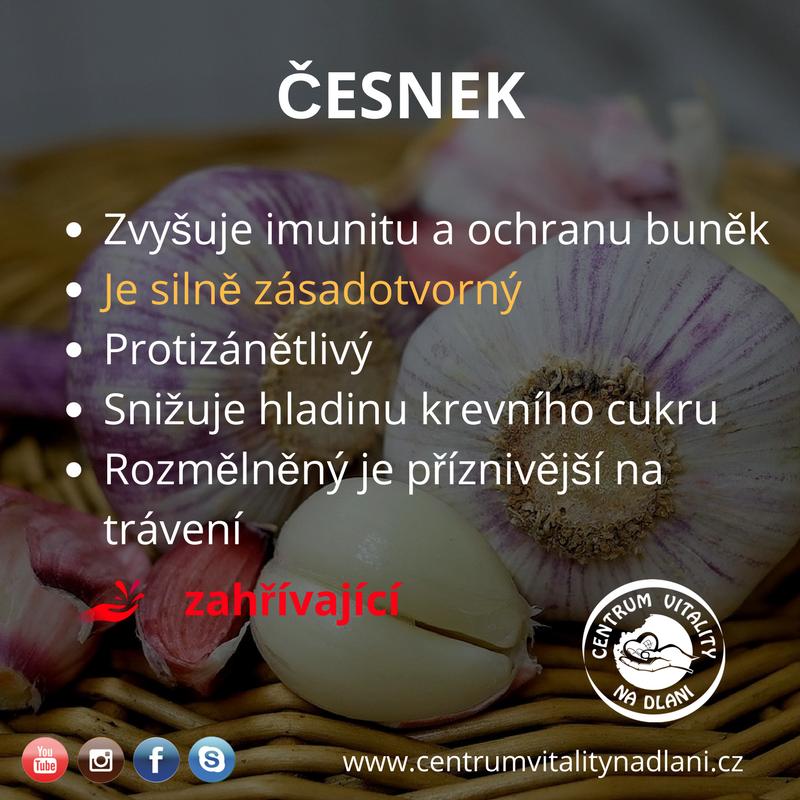 Česnek.png
